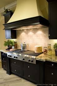 Black Cabinet Kitchens Pictures 53 Best Black Appliances Images On Pinterest Dream Kitchens
