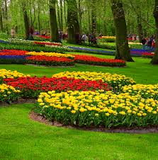flower garden in amsterdam high quality stock photos of
