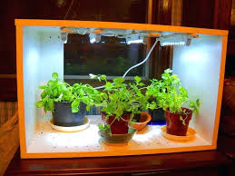 indoor garden lights home depot indoor garden lights fall fluorescent lighting for indoor gardening