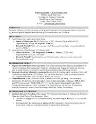 nursing student resume for internship student resumes sles