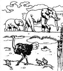 zoo coloring pages print dots zoos free