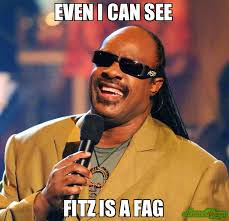 Fag Memes - even i can see fitz is a fag meme stevie wonder 78704