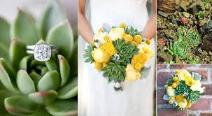 wedding flowers types of succulent wedding flowers eco friendly wedding ideas