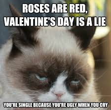 grumpy cat valentines grumpy cat valentines day poem lillian vernon