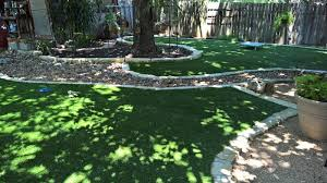 Astro Turf Backyard Landscaping Ideas For San Antonio Homeowners Hill Horticulture