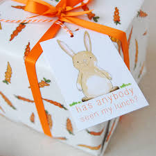 carrots and rabbits wrapping paper set by clara and macy