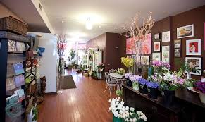florists in toronto florist the best desktop wallpaper online