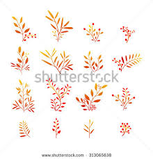 set colorful autumn leaves vector illustration stock vector