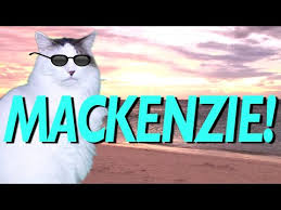 Mackenzie Meme - happy birthday mackenzie epic cat happy birthday song youtube