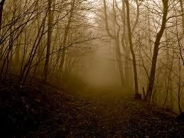 Pumpkin Farms In Wisconsin Dells by Wisconsin Haunted Trails U0026 Spook Walks