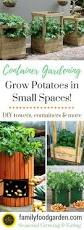 Container Gardening Potatoes - grow potatoes in containers save space u0026 increase yield