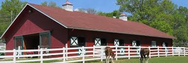 Barn Designs For Horses Horse Barn Basics Equestrian Barns U0026 Architecture Start Living