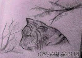 tig tiger drawing sketch cherry blossom realism
