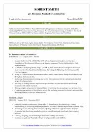 ecommerce analyst sample resume professional ecommerce business