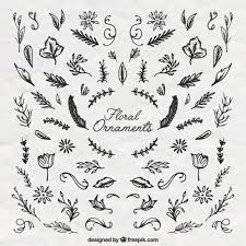 sketches floral ornaments vector free