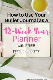 the 12 week year book 845 best get organized images on diary