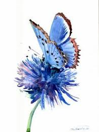 image result for watercolor butterfly tattoo small flower