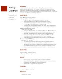 Google Templates Resume Google Template Resume