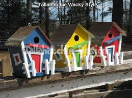 Wacky Garden Ideas 48 Best Wacky Gardens Images On Pinterest Backyard Ideas
