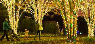 Garvan Gardens Christmas Lights Portfolio 3 Fromme Design Garden Landscape Display