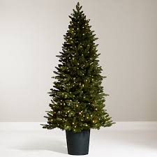 buy lewis bala pre lit potted fir tree 7ft