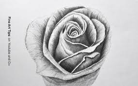 pencil rose sketches angel drawing of pencil sketches rose