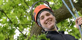 Counselling Studies And Skills Derby Derby Arboriculture