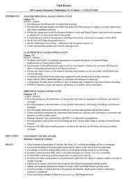 great sales resumes pre sales consultant resume example great sales resumes samples