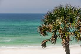 grayton beach florida 4br vacation rental home 210 grayton trails