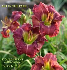 Reblooming Daylilies 610 Best Daylilies Images On Pinterest Flowers Flower Gardening