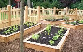 Vegetable Garden Bed Design by Raised Vegetable Garden Design
