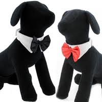Bow Tie Halloween Costumes Dog Halloween Costumes Small Dog Costumes