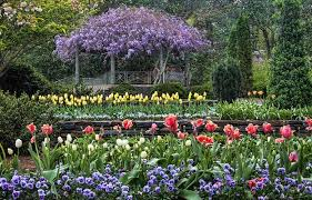 Pictures Of Pergolas In Gardens by Pergola Restoration Project Duke Gardens