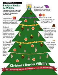 christmas tree recycling christmas trees for wildlife fish and wildlife service