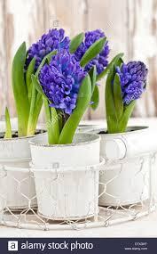 pots stock photos u0026 pots stock images alamy