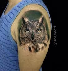 realistic owl shoulder tattoo best tattoo ideas u0026 designs