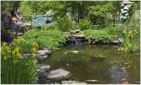 backyards superb summit nj 07901 koi pond water garden services
