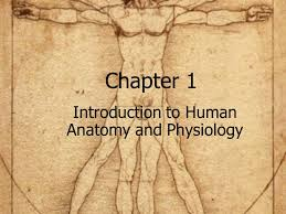 What Is Human Anatomy And Physiology 1 Introduction To Human Anatomy And Physiology Ppt Download