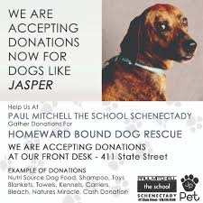 funraising for homeward bound dog rescue of new york