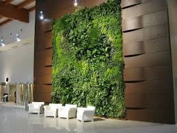 live plant and moss wall i am in love definitely need to find a