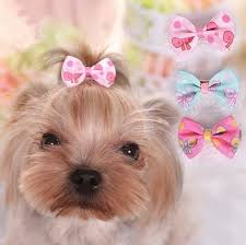 2018 Cute Pet Dog Cat Dog Grooming Beauty Supplies Bows Hairpin Pet