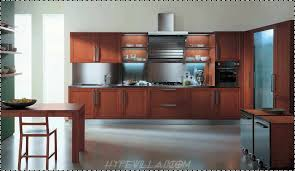 Kitchen Cabinet Inside Designs Beautifull Flat Pack Kitchen Cabinets Greenvirals Style