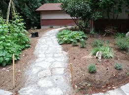 woodbrook native plant nursery pool my own personal jungle