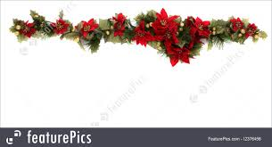 christmas poinsettia stock photo i2376456 at featurepics