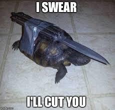 Turtle Memes - image tagged in original meme turtle meme imgflip