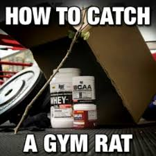 Gym Birthday Meme - 20 ways to tell if you re a certified gym rat my voyage through time
