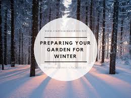 preparing your garden for winter vladislav davidzon