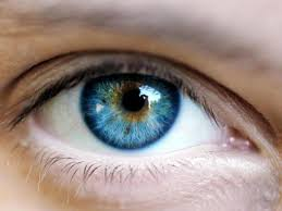 the neuroscience of eye contact psychology today