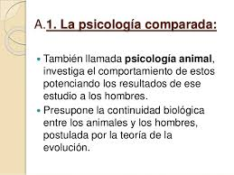 conductismo animal psicología conductista o behaviorismo