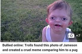 Meme Journal - internet trolls posting kids journal mon tues 8 9 february 2016